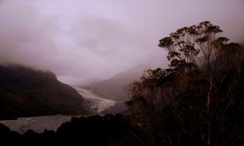 Zdjecie NOWA ZELANDIA / Wyspa Południowa / Franz Joseph Glazier / lodowiec Franc Josef w porannej mgle