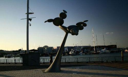 Zdjęcie NOWA ZELANDIA / brak / Auckland / Auckland