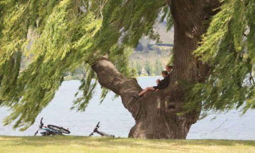 Zdjecie NOWA ZELANDIA / Wyspa Południowa / - / Lake Wanaka