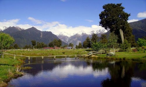 Zdjecie NOWA ZELANDIA / Południowa Wyspa / wioska Fox Glazier - u stóp lodowca / w wiosce Fox Glazier