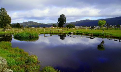NOWA ZELANDIA / Południowa Wyspa / wioska Fox Glazier - u stóp lodowca / cisza ... przed burzą