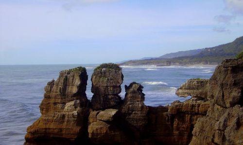 Zdjecie NOWA ZELANDIA / Południowa Wyspa / Westland / wybrzeże Morza Tasmana