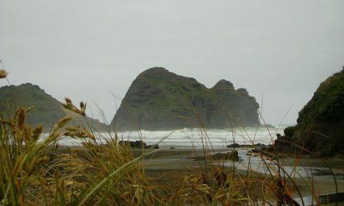 Zdjecie NOWA ZELANDIA / Północna Wyspa / wybrzeże Morza Tasmana w Piha / czarna plaża w Piha