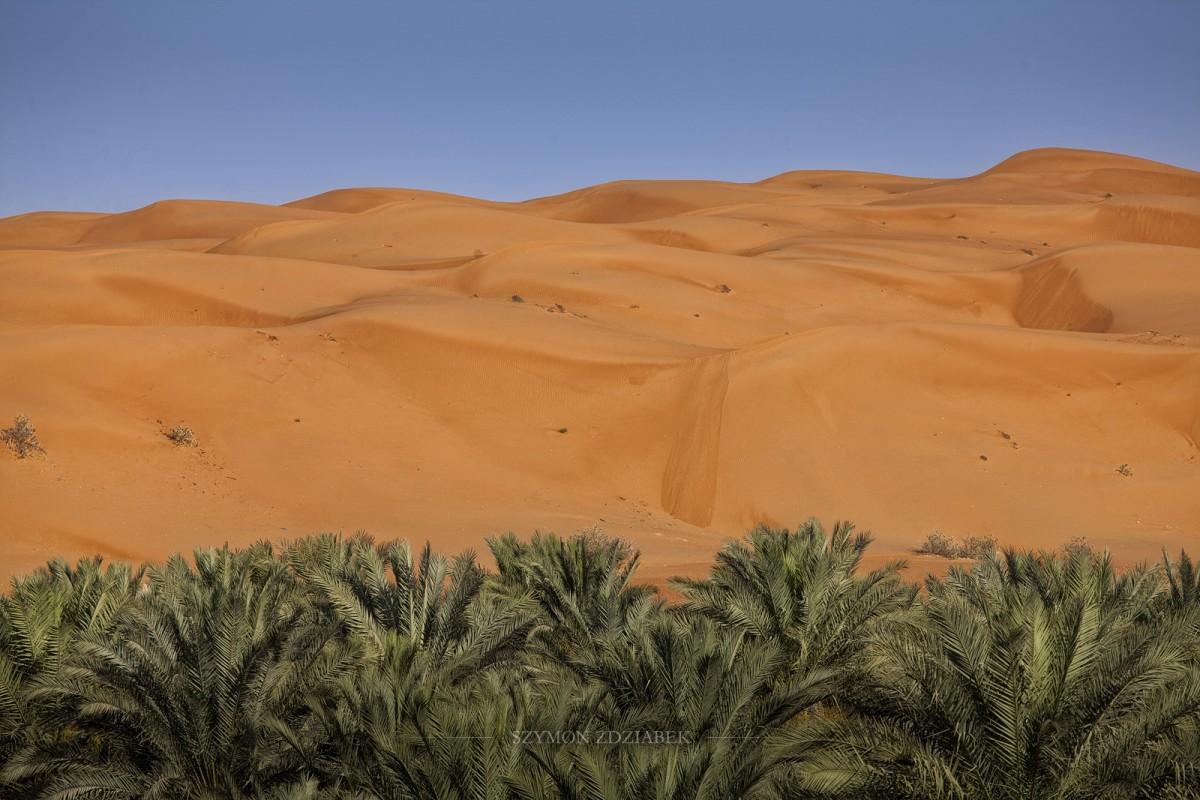 Zdjęcia: Wahiba Sands, Ash Sharqiyah Governorate, Na granicy, OMAN