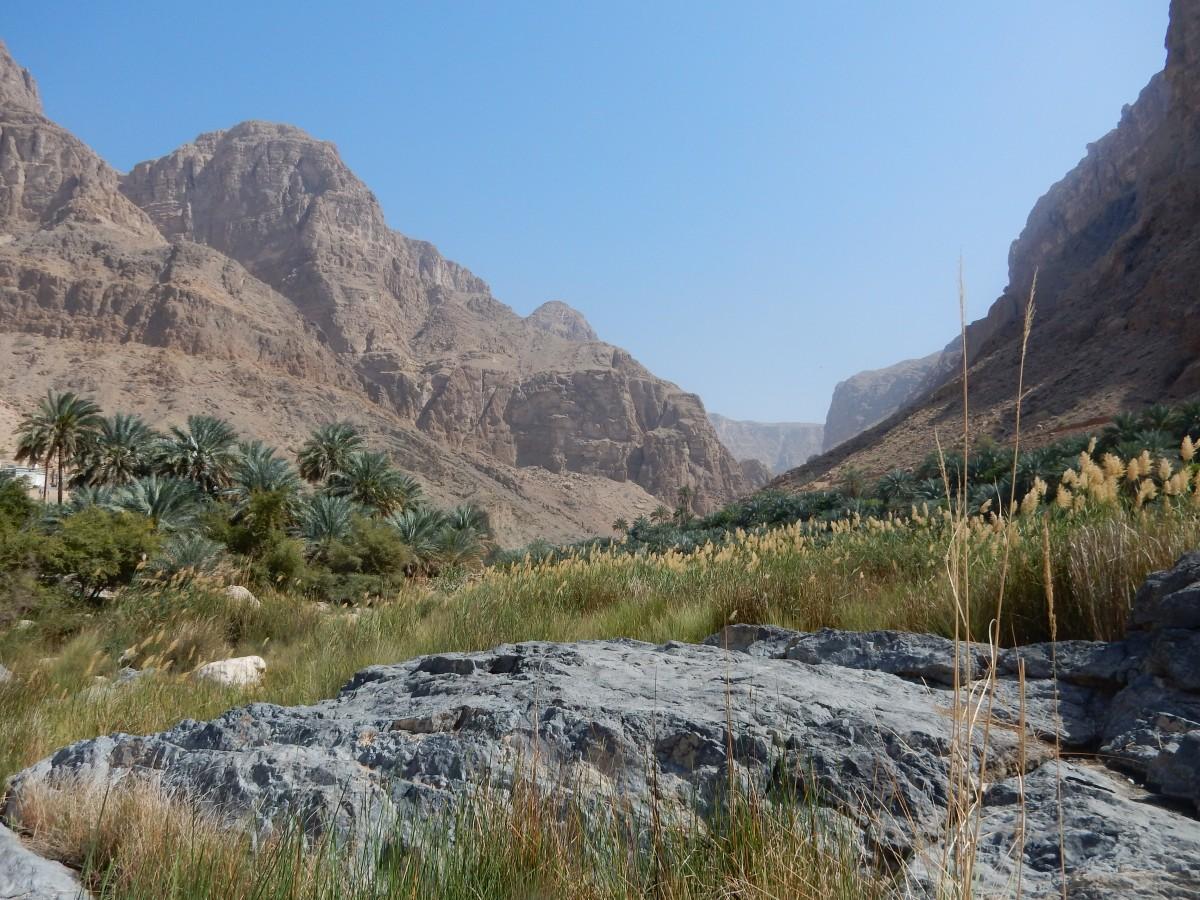 Zdjęcia: Wadi Al Arbeieen, Muhafazat Mascat, Oman , OMAN