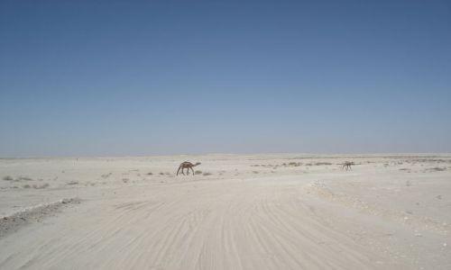 OMAN / Hayma / trasa Hayma - Salalah / Nie miraż