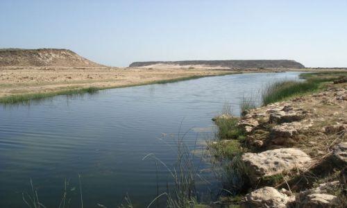 Zdjęcie OMAN / Dhofar / Salalah / Rzeka