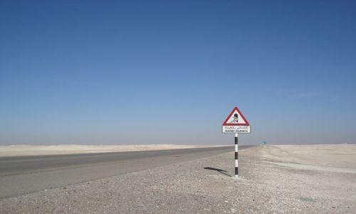 Zdjęcie OMAN / Al Wusta / trasa Hayma - Salalah / Nietypowy znak