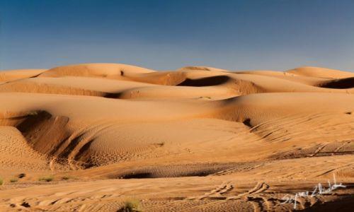 Zdjecie OMAN / Ash Sharqiyah / Wahiba Sands / Wahiba Sands