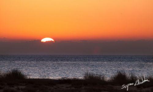 OMAN / Ras al Jinz / Ras al Jinz / Wschód słońca