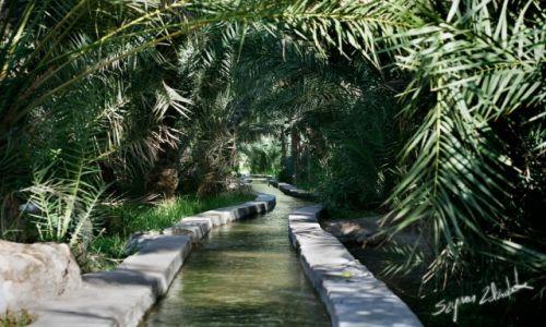 Zdjecie OMAN / Okolice Qurayyat / Wadi Dayqah Dam / Falaj