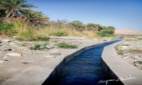 Zdjęcie OMAN / Okolice Qurayyat / Wadi Dayqah Dam / Falaj