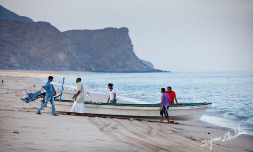 Zdjęcie OMAN / Muscat Governorate / As Sifah / Koniec połowów