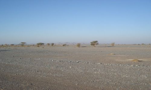 Zdjecie OMAN / Ad Dakhiliyah Governorate / droga Muscat - Al Hayma / Omański interior
