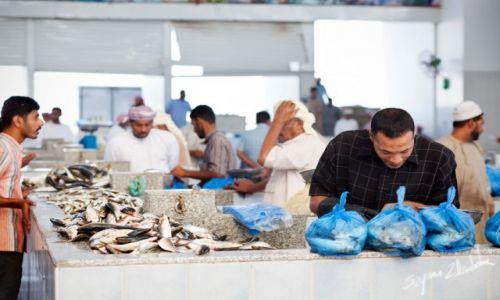 Zdjęcie OMAN / Sohar / Sohar Fish Market / Handel