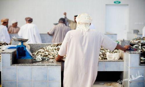 Zdjęcie OMAN / Sohar / Sohar Fish Market / Stoisko rybne