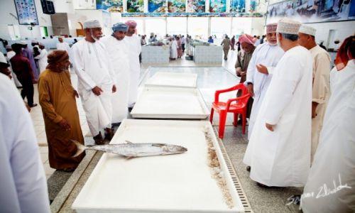 Zdjęcie OMAN / Sohar / Sohar Fish Market / Licytacja ryby