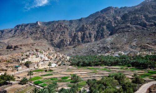 Zdjęcie OMAN / Wadi Bani Awf / Bilad Sayt / Tarasy uprawne