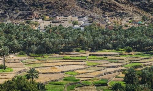 Zdjecie OMAN / Al Hajar Mountains / Bilad Sayt / Wioska