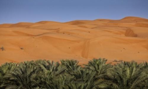 Zdjęcie OMAN / Ash Sharqiyah Governorate / Wahiba Sands / Na granicy