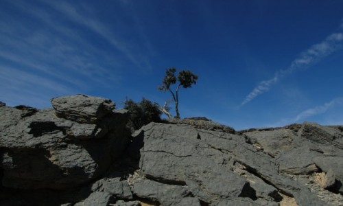 Zdjecie OMAN / Oman / Jabal Sham / Oan