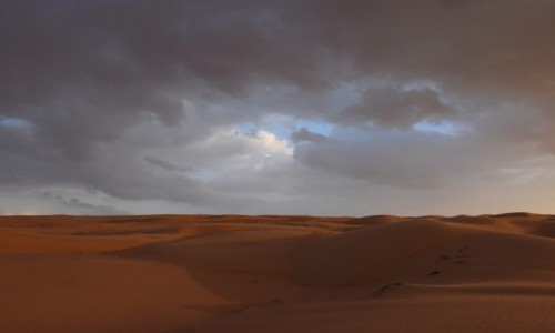 Zdjęcie OMAN / Wahiba Sands / Wahiba Sands / Nad pustynię idzie deszcz