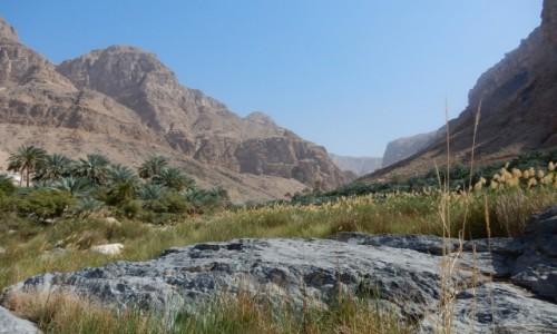 Zdjecie OMAN / Muhafazat Mascat / Wadi Al Arbeieen / Oman