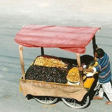 Zdjęcia: Quetta, Zach. Pakistan, Domokrążca, PAKISTAN