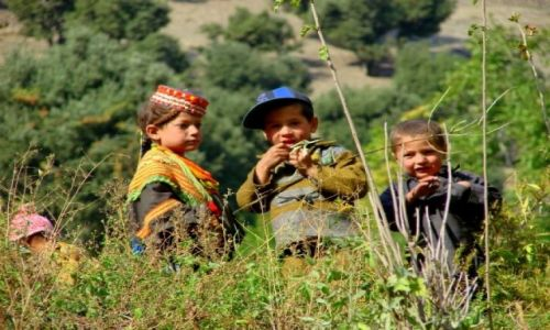 Zdjęcie PAKISTAN / Bumburet / Bumburet / Przyjaciele
