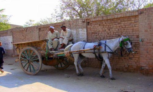 Zdjęcie PAKISTAN / Czitral / Czitral / Transport