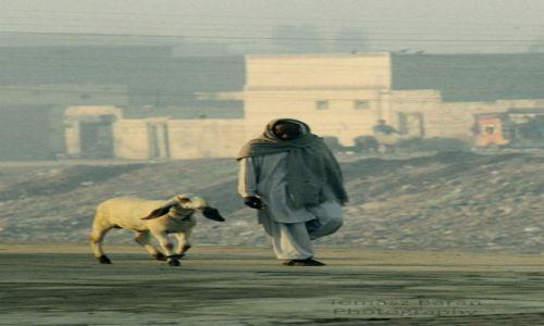 Zdjecie PAKISTAN / - / Quetta / 'spacer z przyjacielem'