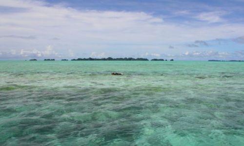 Zdjęcie PALAU / - / Palau / płytko i pięknie