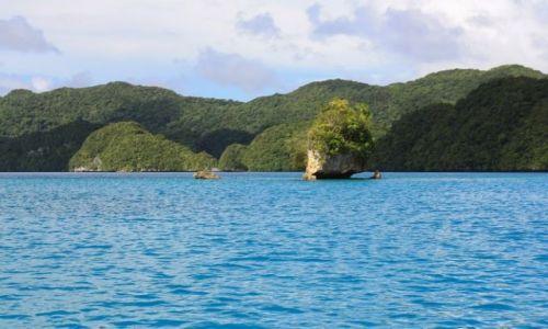Zdjęcie PALAU / - / Palau / jest ich tam ponad 250