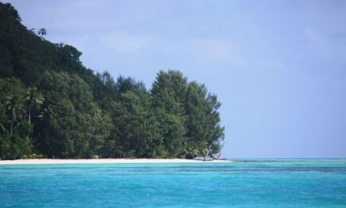Zdjęcie PALAU / - / Palau / malutka plaża