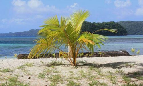 Zdjęcie PALAU / - / Palau / kiedyś będę duża