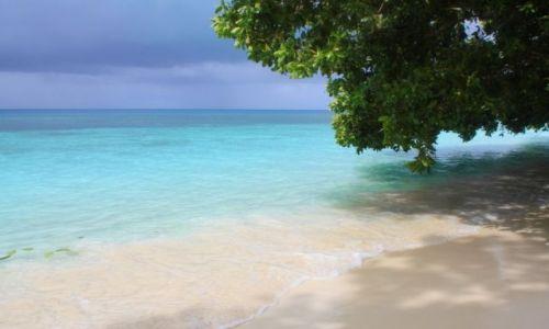Zdjęcie PALAU / - / Palau / plaża
