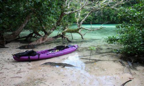 Zdjęcie PALAU / - / Palau / kajakowa wycieczka