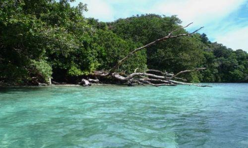 Zdjęcie PALAU / - / Palau / za życia nikt go nie dostrzegał
