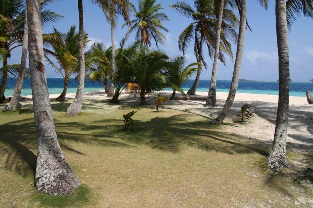Zdj�cia: Isla de Pelicano, San Blas, miejsce na namiot, PANAMA