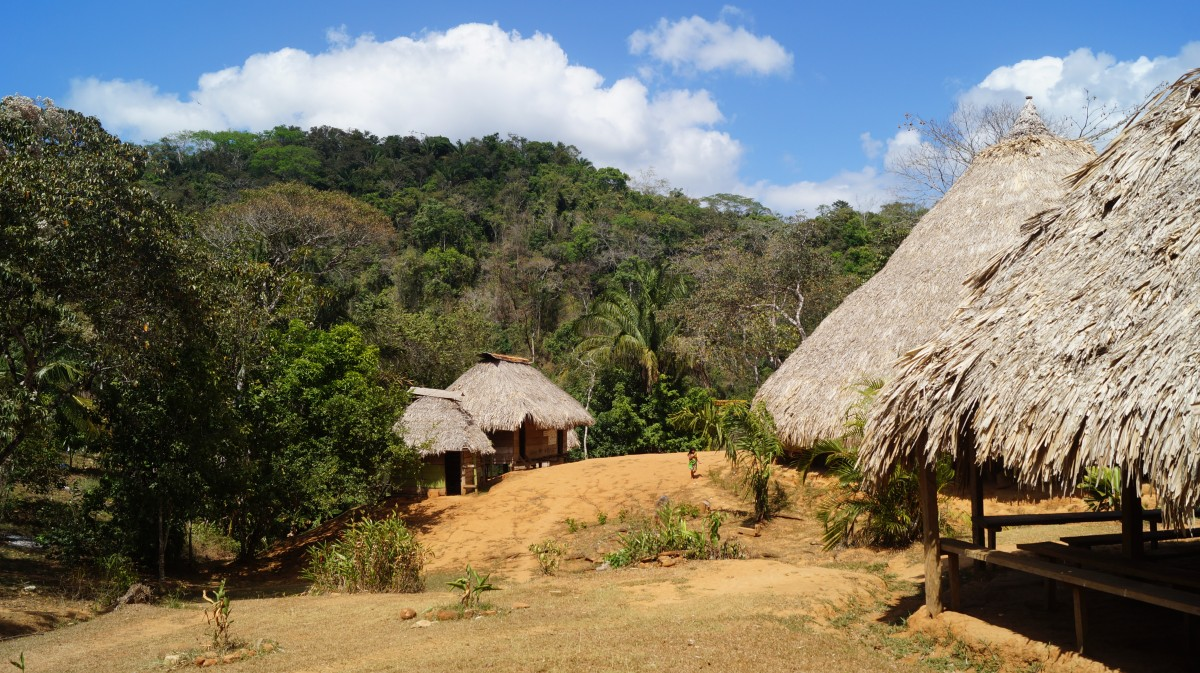 Zdjęcia: Park Narodowym Chagres, Park Narodowym Chagres, Wieś Indian Embera, PANAMA