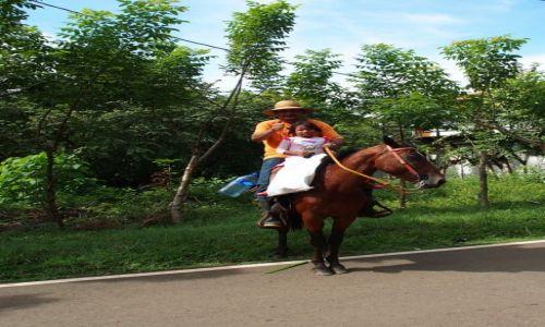 Zdjęcie PANAMA / Veraguas / Santa Catalina / kowboj