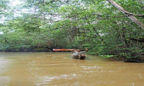 Zdjecie PANAMA / Bocas del Toro / bastimentos / Na rzece