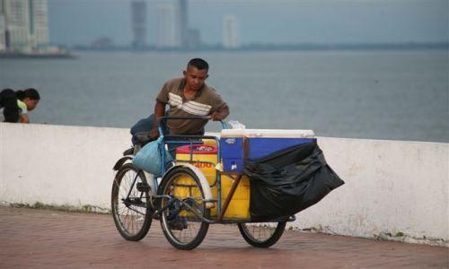 Zdjecie PANAMA / brak / Panama City Plac Francuzki / Rowerowy sklep inaczej 1