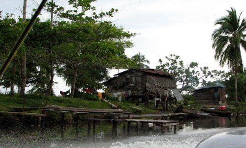 Zdjęcie PANAMA / Bocas del Toro / brak / Płynąc do Changuinola 1