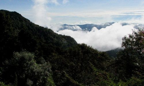 Zdjęcie PANAMA / Boquete / Parque Nacional Volcan Baru / W drodze na Volcan Baru