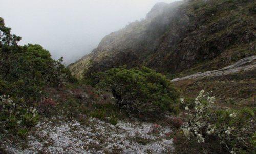 Zdjęcie PANAMA / Boquete / Parque Nacional Volcan Baru / W drodze na Volcan Baru (3.475m)