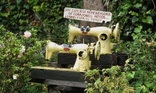 Zdjęcie PANAMA / Chiriqui Province / Boquete - El Explorador / Osobliwy ogród