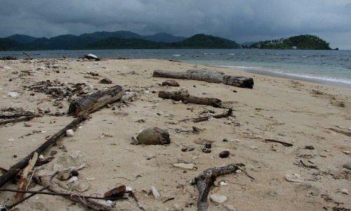 Zdjęcie PANAMA / Colon Province / Isla Grande / Na plaży
