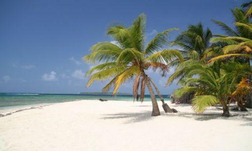 Zdjęcie PANAMA / San Blas / Isla de Pelicano / paradiso