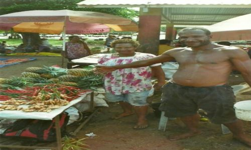 Zdjęcie PAPUA NOWA GWINEA / Wschodnia PNG / Madang / Ananasy
